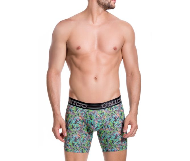BOXER--MEDIO-NATURE-VERDE